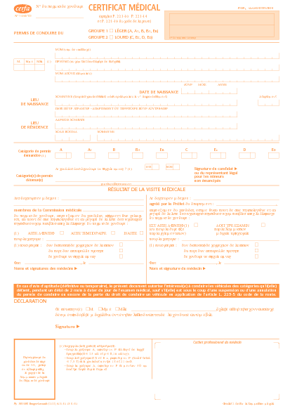 Aperçu Formulaire Cerfa No 11245-03 : Certificat médical pour permis de conduire