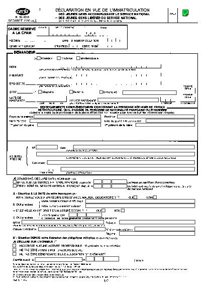 Aperçu Formulaire Cerfa No 60-3596 : Déclaration en vue de l'immatriculation des jeunes gens accomplissant le service national ou libérés du service national