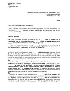 lettre de saisine du cnpa en cas de litige relatif l